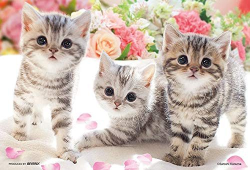 Beverly Jigsaw Puzzle M108-206 Pretty Pet Kitty Cats (108 S-Pieces)