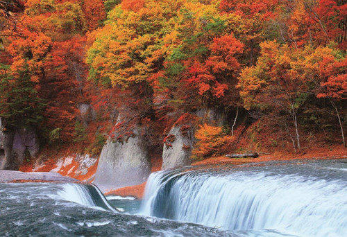 Epoch Jigsaw Puzzle 25-170 Autumn Leaves Fukiware Fall Gumma (300 Pieces)
