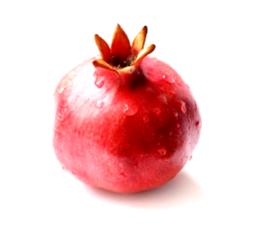 pomegranatelogosmall.jpg.png