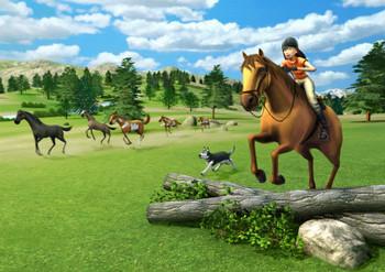 Imagine: Champion Rider (Wii) (Wii U) Rare Australian Version