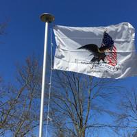 3'x5' God Bless America 9-11 Memorial Flag: Noble Eagle