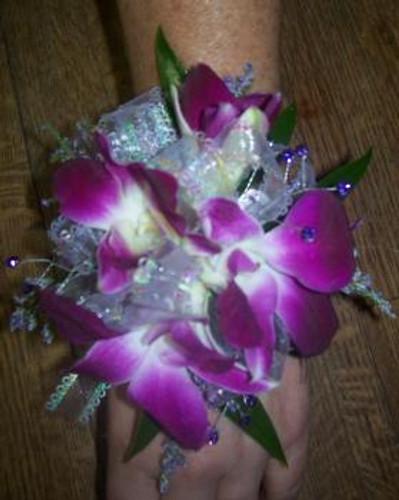 Purple Dendrobium Orchids