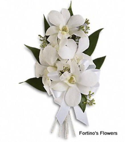 Classic White Orchids