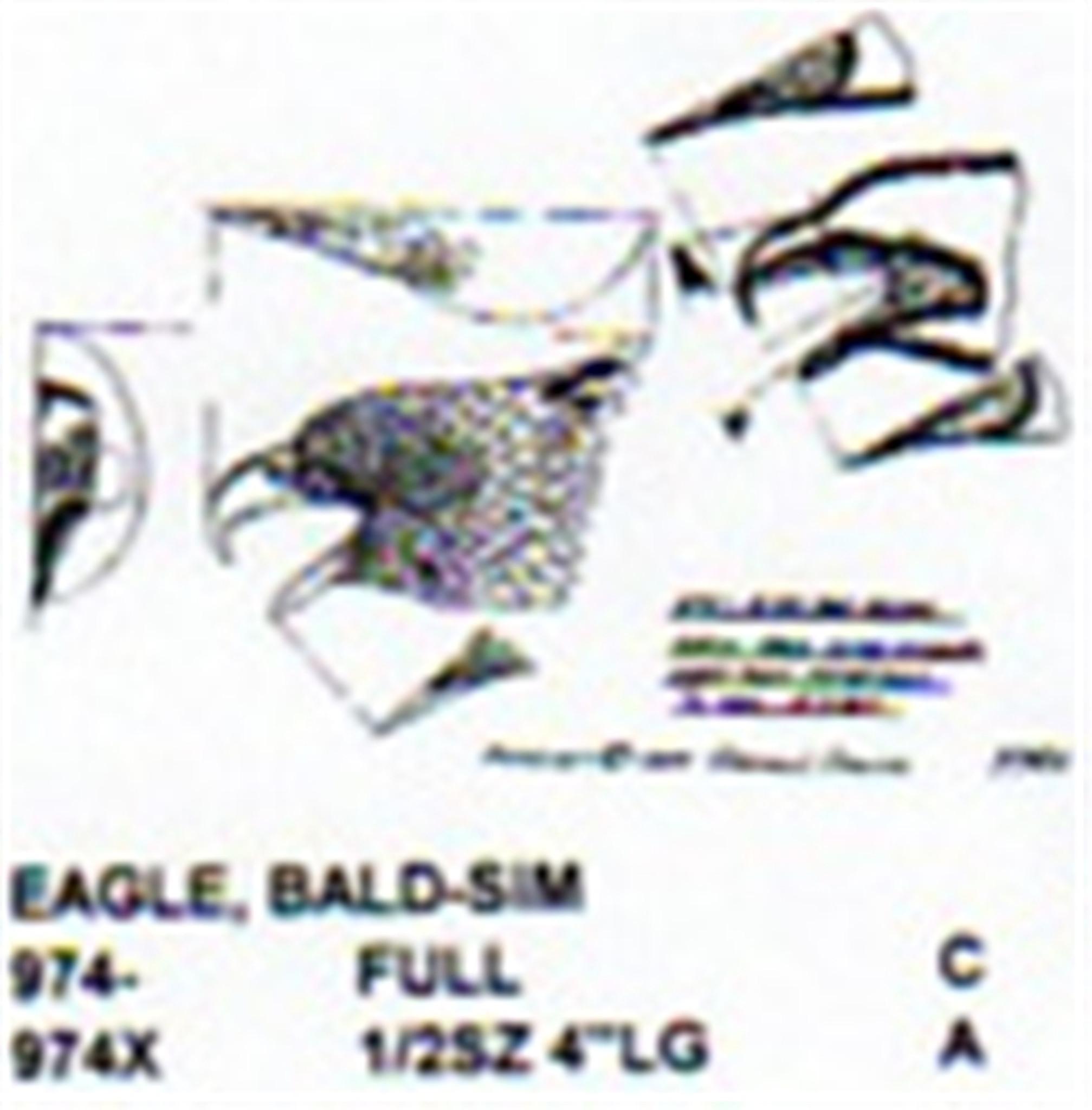 Bald Eagle Airbrush Stencil – Jerusalem House