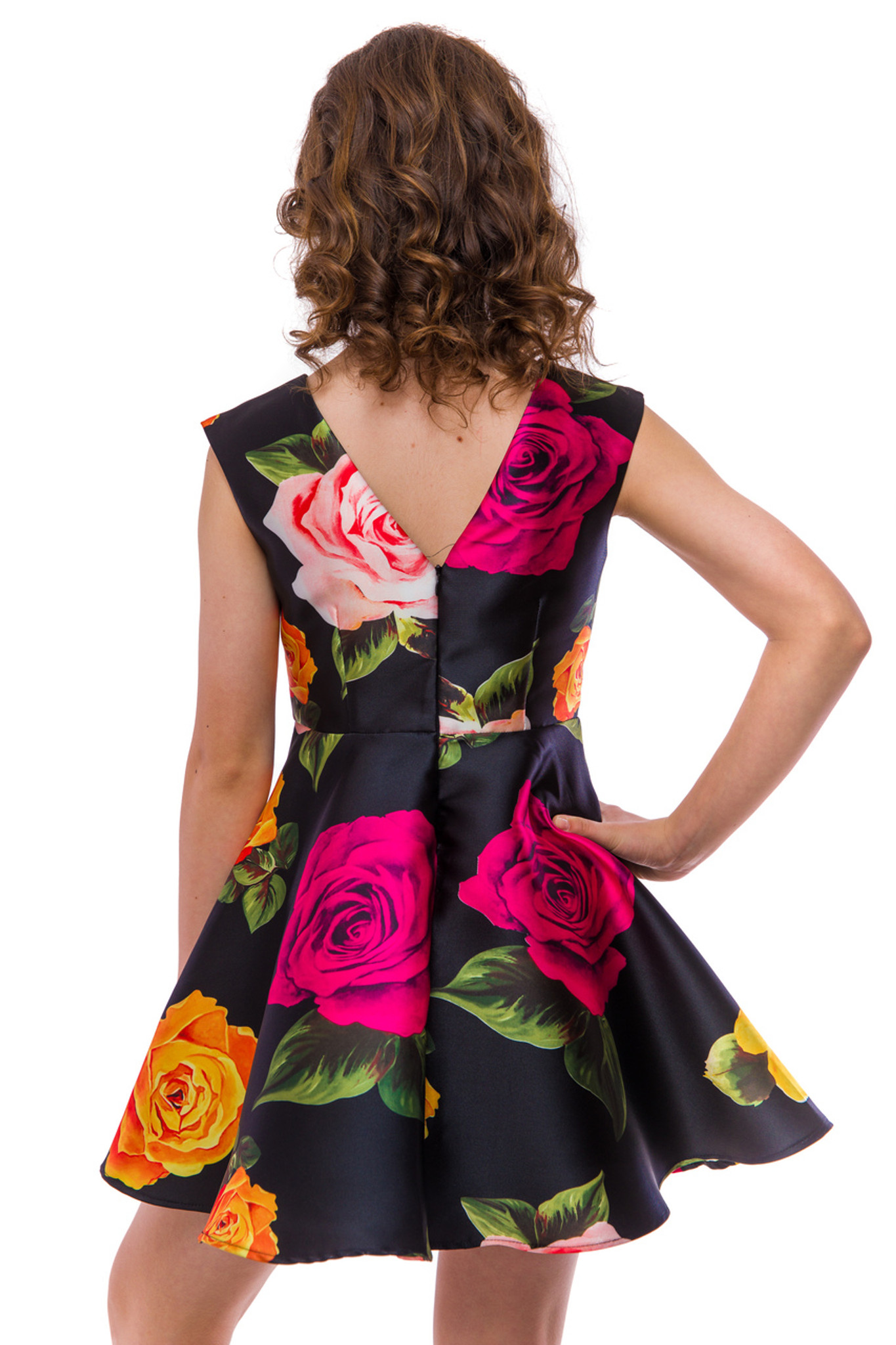 Wild with Roses Cap Sleeve Dress