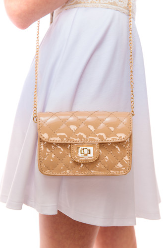 Mini Quilted Purse with Chain Strap (F41F)