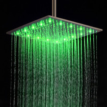 "Castle Bay Murano Sqaure or Round Rainfall 8"" Showerhead"