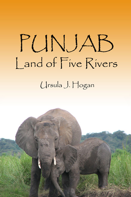 essay on punjab the land of five rivers