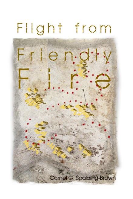 Flight from Friendly Fire - eBook