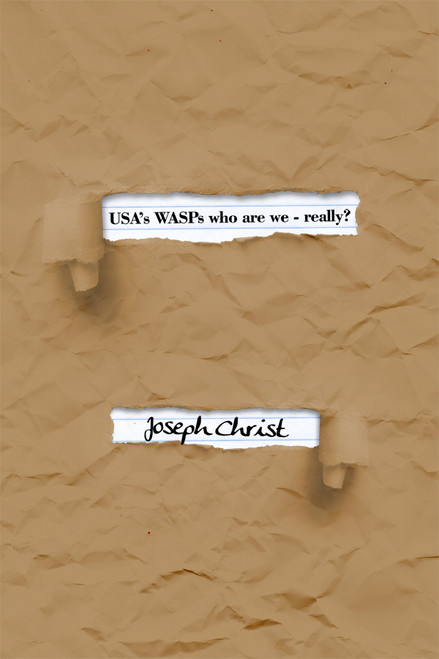 USA's WASPs who are we - really? - eBook