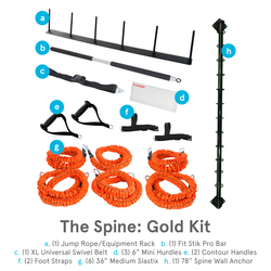 Stroops The Spine, Gold Kit, 17-Piece Wall-Mounted Anchoring System (SPINE GOLD KIT) - 17 Pieces