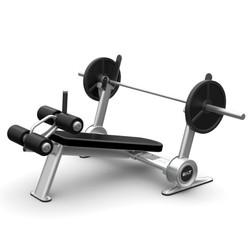BILT by Agassi & Reyes Decline Weight Bench, Silver, BCDB01