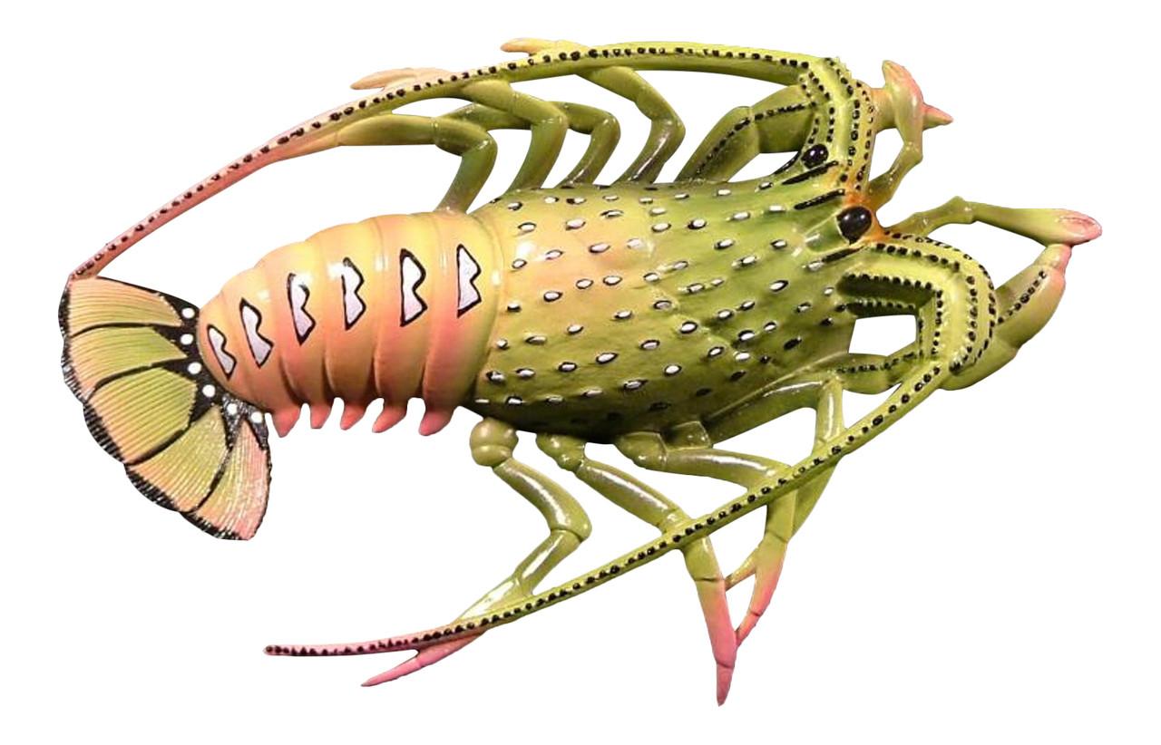 10 Inch Tropical Florida Lobster Nursery Bath Tiki Deck Wall Plaque ...