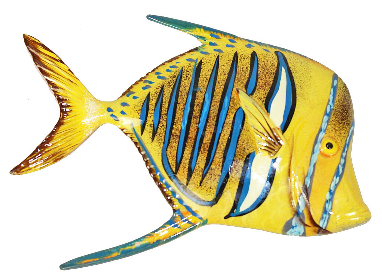 Big 12 Inch Tropical Fish Bath Childrens Wall Decor Striped Fin ...