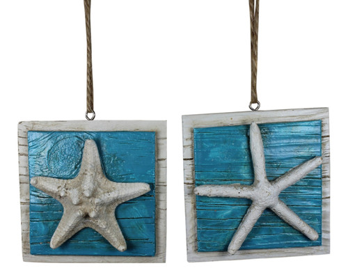 Armoured and Finger Starfish Ocean Christmas Holiday Ornaments Set of 2