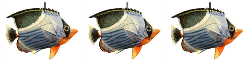 3D Tropical Fish Christmas Tree Ornament 6 Inches Set of 3 Blue and Orange Belly