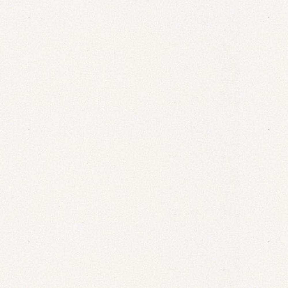 Caesarstone Bench Top Slab 3000 x 1400 - Snow 2141