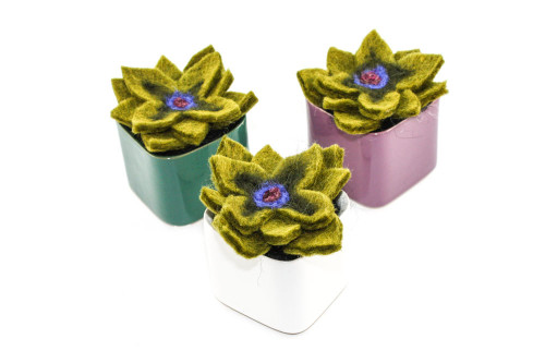 Needle Felted Succulent in Colorful Ceramic Pot (Choose Your Color)