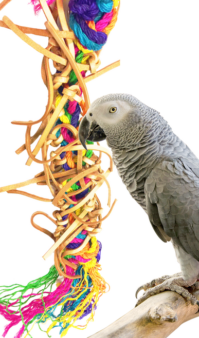 1223 Spiney truly is a chewers delight for those medium to large-sized birds in your family. Colorful strands of sisal are intertwined with veggie tanned leather strips, just giving this toy a plethora of healthy chewing options.