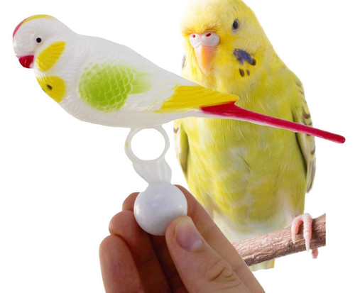 36601 Bird Buddy is the perfect perch companion for your small-sized feathered friend.