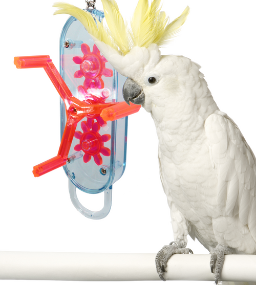 0043 Large Gearhead is one great fun toy for your large feathered friends who love to get mechanical.