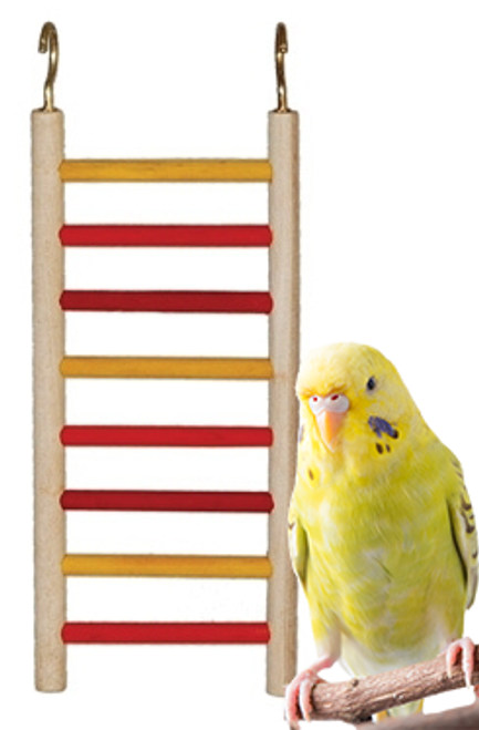 1778 Ladders provide a safe climbing and chewing activity, this is made from natural wood sides with red and yellow colored wooden rungs, comes complete with two hooks for easy cage placement, an excellent choice for your small feathered friend.