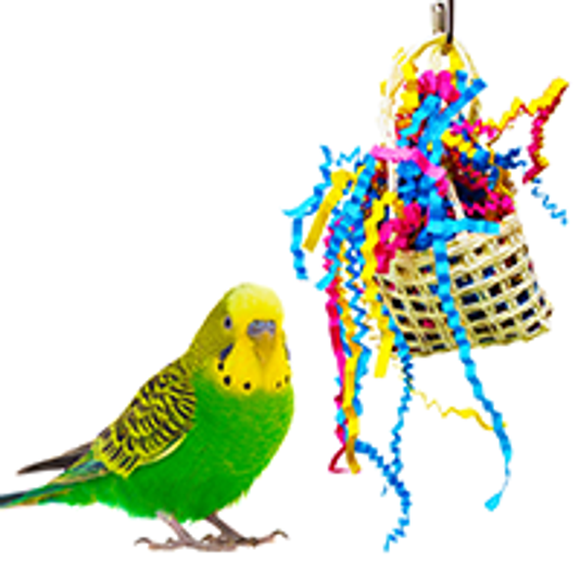 What are good small to medium foraging sherddable bird toys?