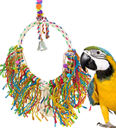 What's the best selling large bird toy for preening?