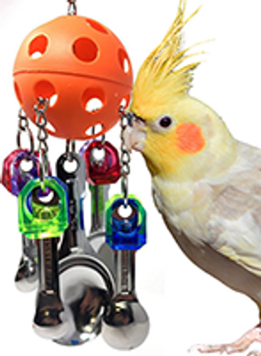 What is a fun medium Spoon bird toy?