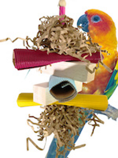What is a good balsa foraging toy for my pet bird?