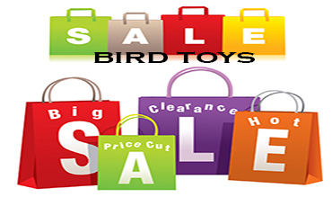 sale-bird-toy-319.jpg