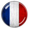 Flag of France Paperweight