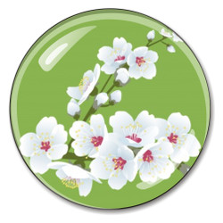 Cherry Blossoms Paperweight