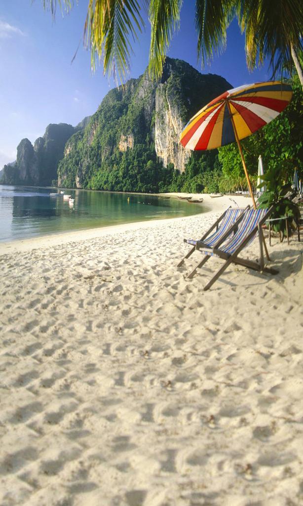 Tropical Hideaway Backdrop