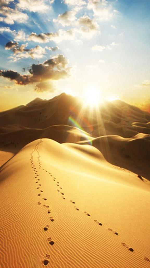 Dunes Backdrop
