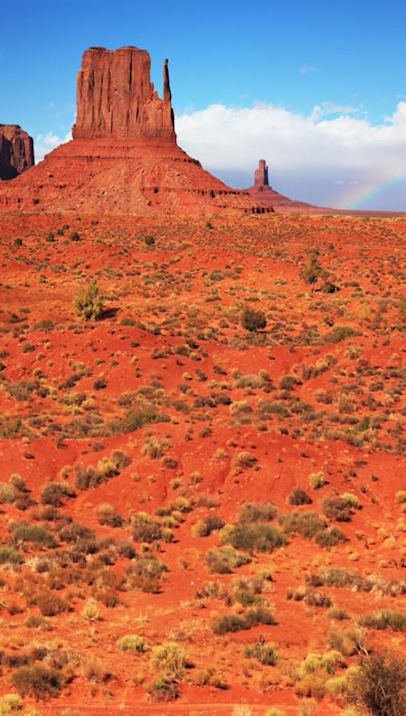 Monument Valley Desert Backdrop