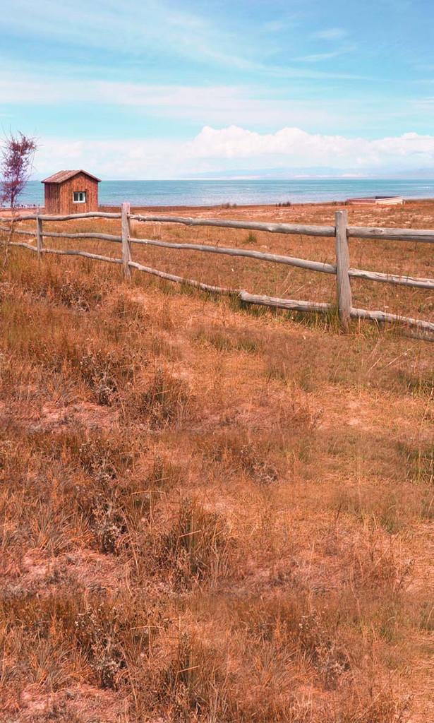 Pasture Fence Backdrop