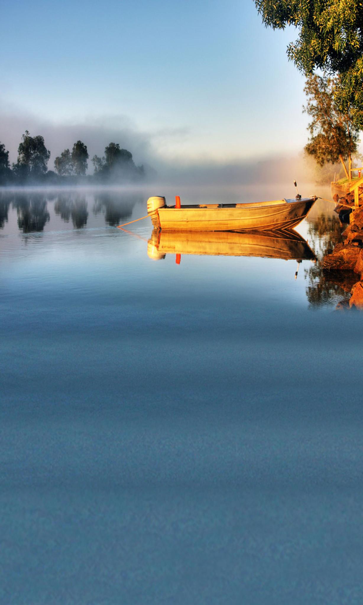Morning fishing backdrop photo pie for Morning star fishing