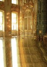 French Ballroom Photo Backdrop