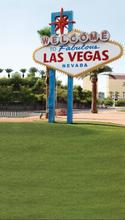 Tall Las Vegas Backdrop