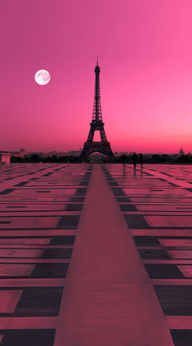 Rose Colored Paris Backdrop