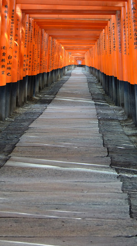 Japanese Passage Backdrop