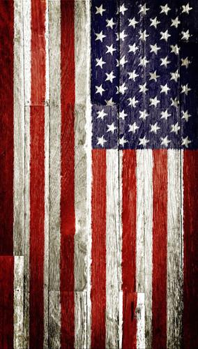 Patriotic Planks Backdrop
