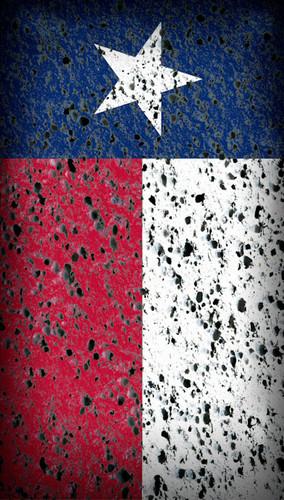 Texas Wall Backdrop