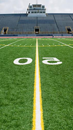 50 Yard Line Backdrop