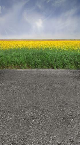 Yellow Flower Road Backdrop