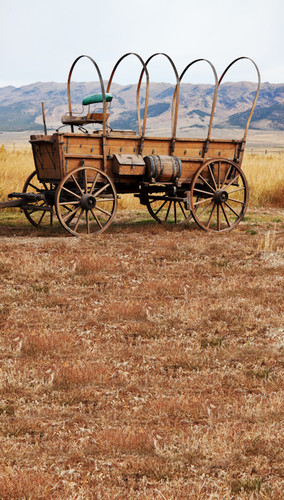 Wagon Trail Backdrop