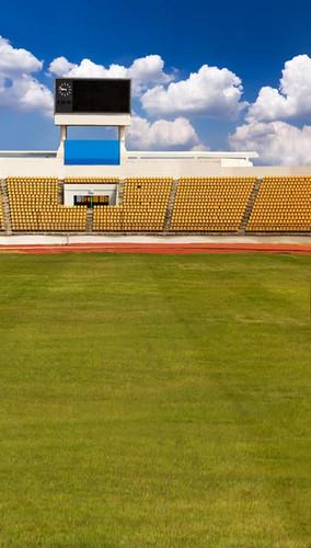 Stadium Field Backdrop