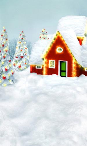Christmas Wonderland Backdrop