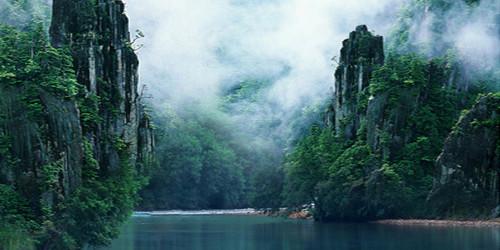 Misty River Wide Format